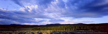 Utah. USA. Cumulus clouds above sagebrush and groves of aspen trees at sunrise. Monroe Mountain. Sevier Plateau. Fishlake National Forest.