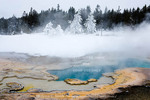 Yellowstone National Park, Wyoming. USA. Heart Spring in winter. Geyser Hill. Upper Geyser Basin.