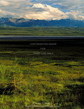 Denali National Park and Preserve, Alaska. USA. Denali (Mt McKinley) & McKinley River Valley.