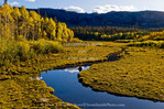 Utah. USA. Creek and meadow in autumn on north slope of Boulder Mountain. Dixie National Forest.
