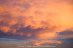 Utah. USA. Altocumulus cloud with mammatus and cirrus clouds at sunset. Fremont River Valley.