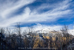 Utah. USA. View down Mill Hollow into Logan Canyon in winter. Bear River Range. Wasatch Mountains. Uinta-Wasatch-Cache National Forest.