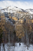 Utah. USA. Winter hiker in Mill Hollow above Logan Canyon. Bear River Range. Wasatch Mountains. Uinta-Wasatch-Cache National Forest.
