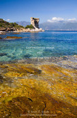 Corsica. France. Europe. Clear water in Gulf of St. Florent (Golfe de St. Florent). Ruins of Genoese tower on Point Mortella (Punta Mortella) in distance.