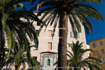 Corsica. France. Europe.. Palm trees and apartment building. Ajaccio.