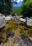 Corsica. France. Europe.. Clear water & granite below forest of beech & laricio pine trees above Col de Vizzavona. Along the GR20 trail (aka, Fra li Monte).