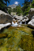 Corsica. France. Europe. Pool of clear water & granite below forest of beech & laricio pine trees near Cascades des Anglais. Along the GR20 trail (aka, Fra li Monte). Monte d'Oro in distance.