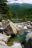 Corsica. France. Europe.. Pool of clear water & granite boulders below forest of beech & laricio pine trees near Cascades des Anglais. Along the GR20 trail (aka, Fra li Monte). Monte d'Oro in distance.