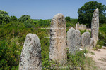 Corsica. France. Europe. Alignment of standing stones at Pagliaju (Alignement de Pagliaju). Site consists of 258 Bronze Age megaliths (menhirs).