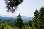 Corsica. France. Europe. Pine forest & view of ridges from Col de St. Eustace.