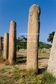 Corsica. France. Europe. Stone alignment of I Stantari (Alignement d'l Stantari). Bronze-age granite megaliths (menhirs). Cauria Archeological Site (Site archéologique Cauria).