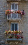 Corsica. France. Europe. Flower boxes on window balconies. House in Sartene.