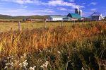 A Quebec Farm