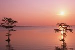 Albemarle Sound at Sunrise