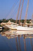 Skipjacks in Dogwood Harbor