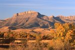 Pine Butte on the Rocky Mountain Front