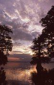 Reelfoot Lake at Sunrise