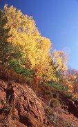 Autumn in the Ottawa River Valley