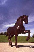 """""""The American Horse"""" (by Nina Akamu, 1999)"""