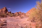 A Dry Wash in the Sonoran Desert