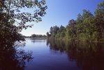 The Namekagon River at Stinnett Landing