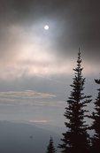 Fog in the Cascade Range