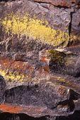 Lichen Patterns on Fort Rock