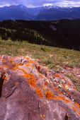 A Glacial Erratic on Vail Mountain