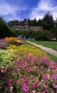 The Garden at Springwood