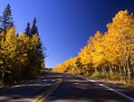 A Montana Highway in Autumn