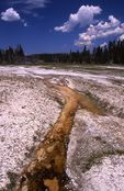Bacterial Mats at Yellowstone's Splendid Geyser