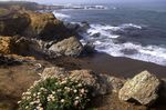 Moonstone Beach on the California Coast