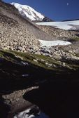 Mount Rainier, from the Wonderland Trail near Spray Park
