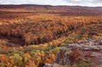 The Big Carp River Valley