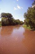 The Wild Rice River