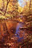 Pinkerton Creek