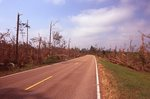 May 2011 Tornado Damage along the Natchez Trace Parkway