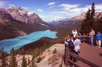 Tourists at Peyto Lake