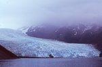 Aialik Glacier in 2011