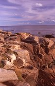 The Rocky Coast of Frenchman Bay at Otter Point