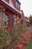 The Roosevelt Summer Cottage