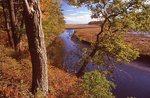 The Merriland River