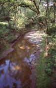 Cub Creek