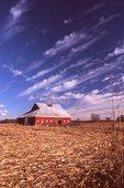 A Farm in Northwestern Illinois