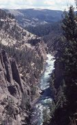 The Yellowstone River in Black Canyon