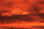 Sunrise Clouds over the Chihuahuan Desert (Cloud Study #13)