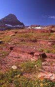 Bedrock Outcrops above Logan Pass
