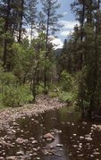 Bear Wallow Creek