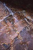A Gentle Sheet Waterfall in the Gunter Fork Valley