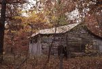 An Old Barn in the Missouri Ozarks